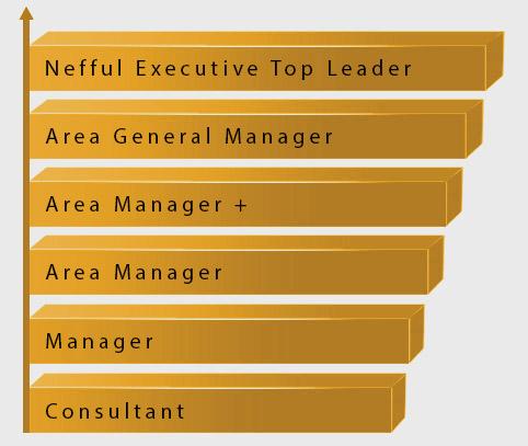 regulation-hierarchy-chart